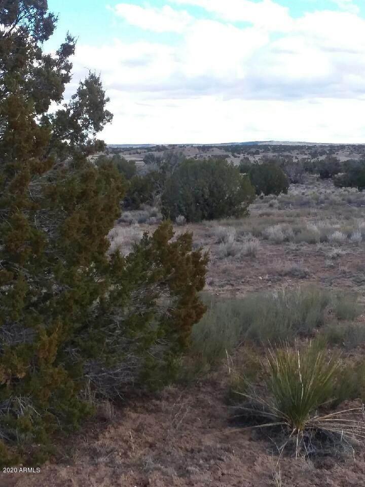 Lot 185 Carrizo Ranches Estates - Photo 1