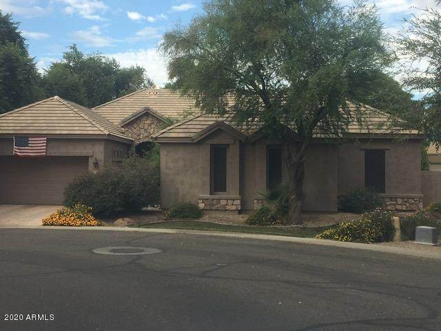 1902 S Los Altos Drive, Chandler, AZ 85286 (MLS #6030656) :: The Everest Team at eXp Realty