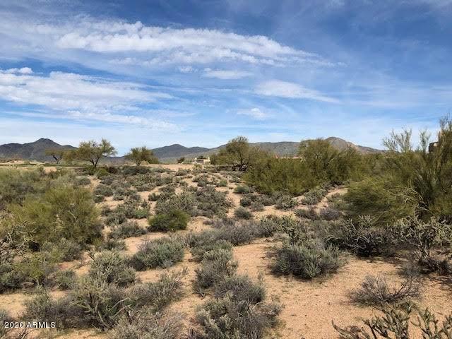 10108 E Sundance Trail, Scottsdale, AZ 85262 (MLS #6032521) :: Brett Tanner Home Selling Team