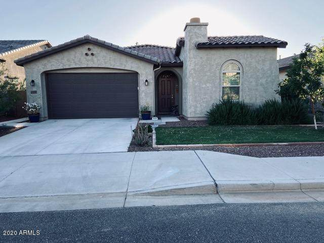 21950 N 97th Glen, Peoria, AZ 85383 (MLS #6080080) :: The Everest Team at eXp Realty
