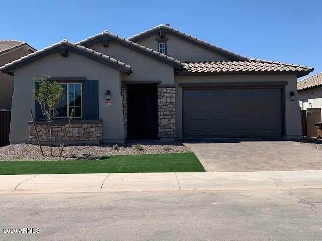 41215 W Almira Drive, Maricopa, AZ 85138 (MLS #6095818) :: neXGen Real Estate