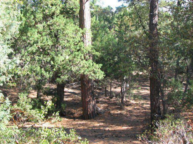 1104 N Button Bush Court, Payson, AZ 85541 (MLS #6101577) :: neXGen Real Estate