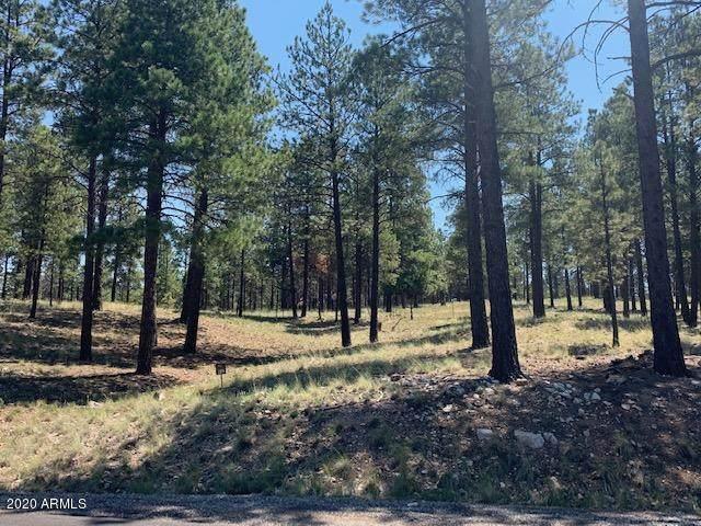 2531 E Del Rae Drive, Flagstaff, AZ 86005 (MLS #6111669) :: The Bill and Cindy Flowers Team