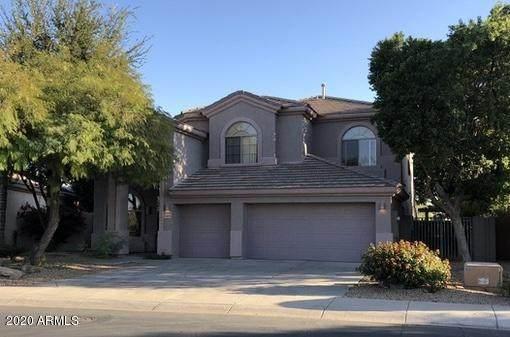 13603 W Holly Street, Goodyear, AZ 85395 (MLS #6142090) :: Lifestyle Partners Team
