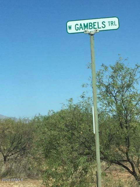 Lot #4 Gambels Trail, Huachuca City, AZ 85616 (MLS #6152731) :: My Home Group