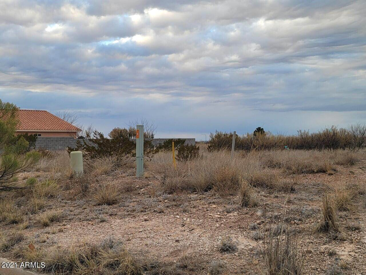 XXXX Old Palo Verde Drive - Photo 1