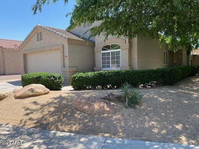 9163 W Deanna Drive, Peoria, AZ 85382 (MLS #6217689) :: Howe Realty