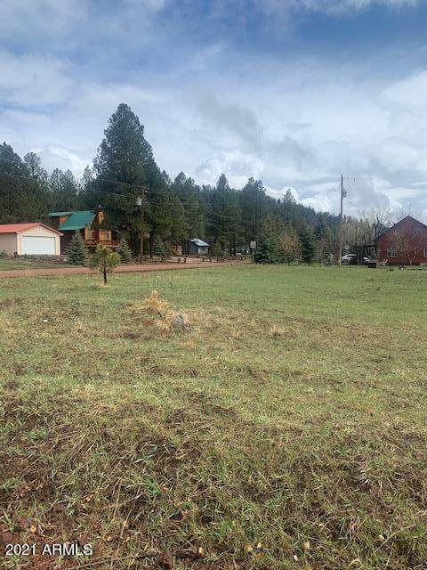 103 W Skyhawk Road, Pinetop, AZ 85935 (MLS #6225265) :: Howe Realty