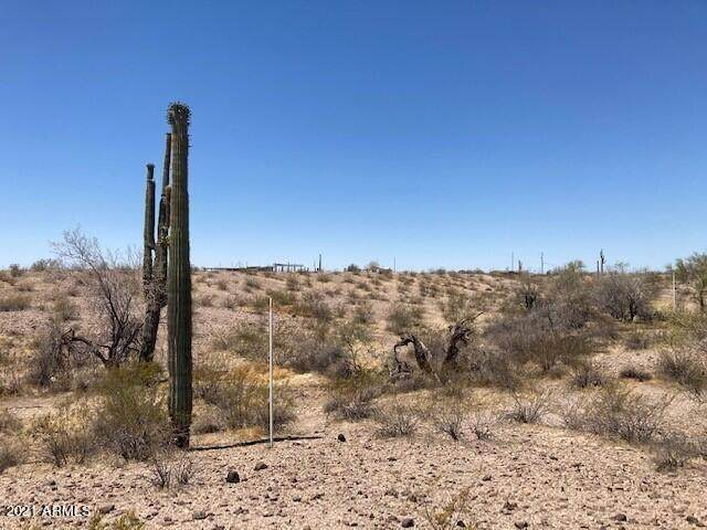 332 Ave Earll Drive, Tonopah, AZ 85354 (MLS #6252025) :: Howe Realty