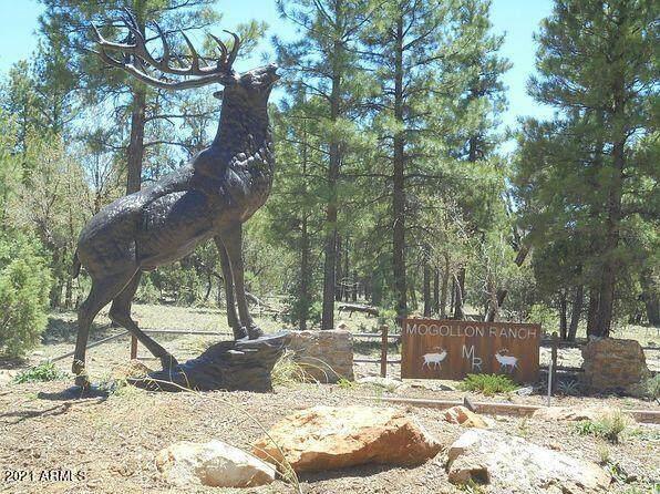 6473 Mogollon Trail - Photo 1