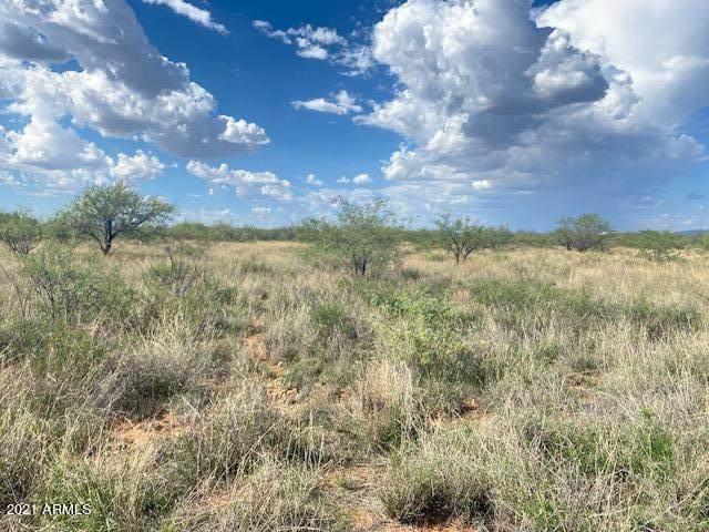 TBD N 104-27-065-F Huachuca Vista Tr Trail N, Hereford, AZ 85615 (MLS #6271431) :: Keller Williams Realty Phoenix