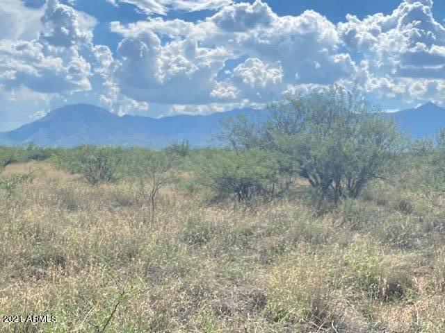 TBD N 104-27-065-B Huachuca Vista Trail N, Hereford, AZ 85615 (MLS #6271434) :: Keller Williams Realty Phoenix
