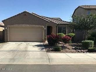 3637 E Lodgepole Drive, Gilbert, AZ 85298 (MLS #6272200) :: Elite Home Advisors
