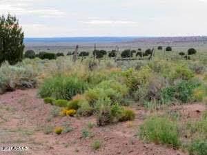 Woodridge Ranch Unit 15 Lot 614 - Photo 1