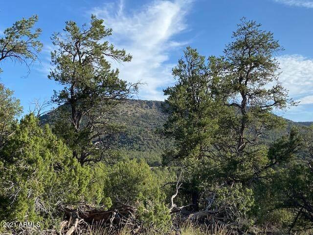 51439 Floyd Ranch Road - Photo 1