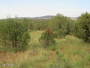 3961 N Double A Ranch Road, Ash Fork, AZ 86320 (MLS #6286835) :: Fred Delgado Real Estate Group