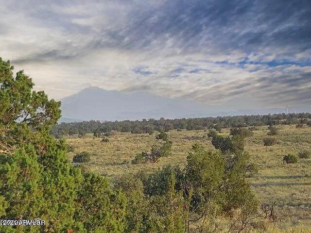 4475 Starlit Trail - Photo 1