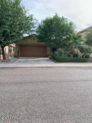 917 E Corrall Street, Avondale, AZ 85323 (MLS #6303834) :: Elite Home Advisors