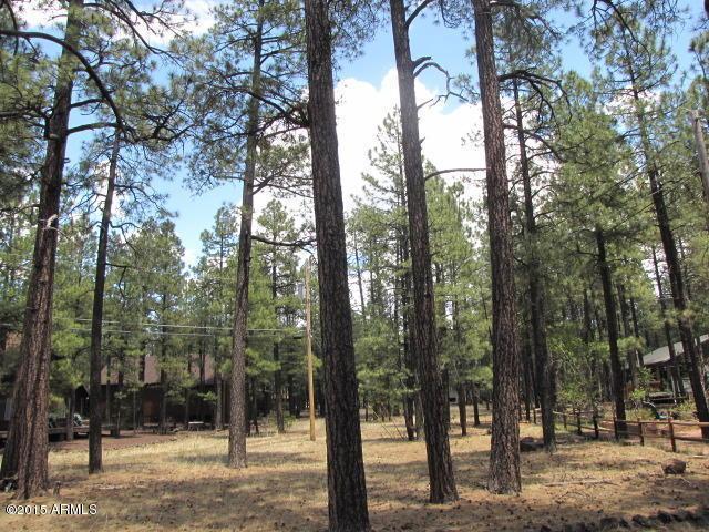 4179 Bucking Horse Trail, Pinetop, AZ 85935 (MLS #5076592) :: The Garcia Group @ My Home Group