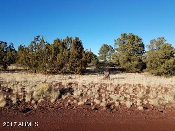 1693 W Maverick Lane, Williams, AZ 86046 (MLS #5536028) :: Riddle Realty Group - Keller Williams Arizona Realty