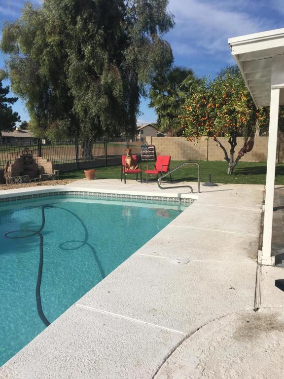 17828 N 44TH Avenue, Glendale, AZ 85308 (MLS #5680216) :: Occasio Realty