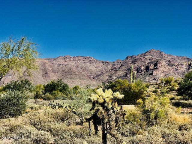 8717 E Quartz Mountain Drive, Gold Canyon, AZ 85118 (MLS #5712428) :: Kortright Group - West USA Realty
