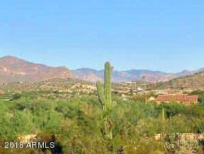 3968 S Two Mule Lane, Gold Canyon, AZ 85118 (MLS #5758730) :: The Wehner Group