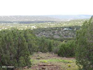 Show Low Pines Unit 10 Lot #382, Concho, AZ 85924 (MLS #6243646) :: Service First Realty