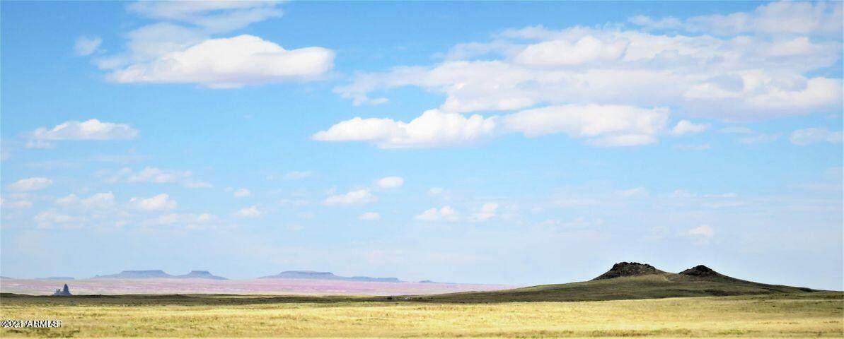 Arizona Rancheros #118 Lot 3 - Photo 1