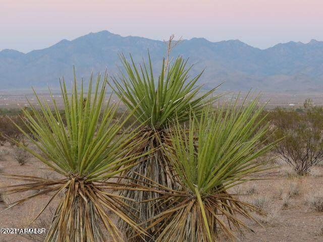 TBD Mineral Rd 5 Acres, Dolan Springs, AZ 86441 (MLS #6266078) :: Yost Realty Group at RE/MAX Casa Grande