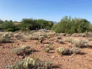 11708 E Windrose Drive E, Scottsdale, AZ 85259 (MLS #6294238) :: The Daniel Montez Real Estate Group