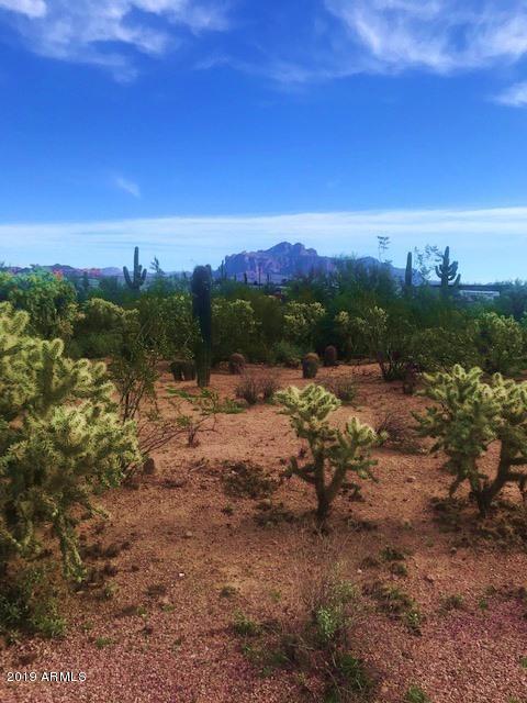 0 N Main Drive, Apache Junction, AZ 85120 (MLS #5859325) :: The Kenny Klaus Team