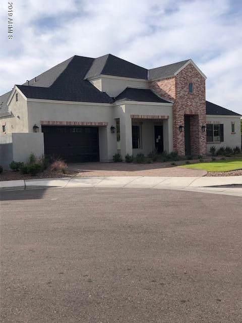 645 W Echo Lane Lot 10, Phoenix, AZ 85021 (MLS #5968919) :: The Kenny Klaus Team