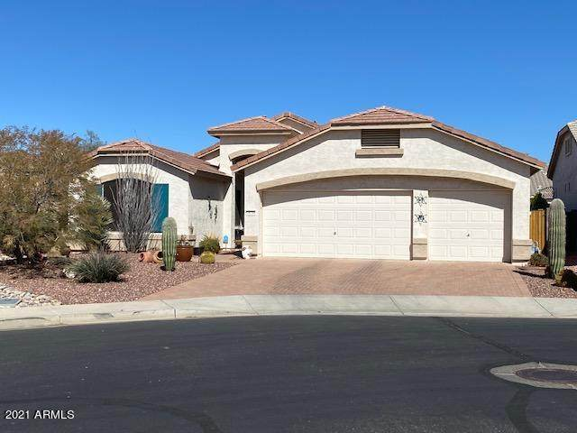 18298 W Stinson Drive, Surprise, AZ 85374 (MLS #6195700) :: Yost Realty Group at RE/MAX Casa Grande