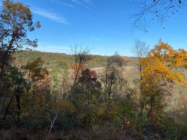 0 Valley Stream Rd, GLENMONT, OH 44628 (MLS #222758) :: The Holden Agency