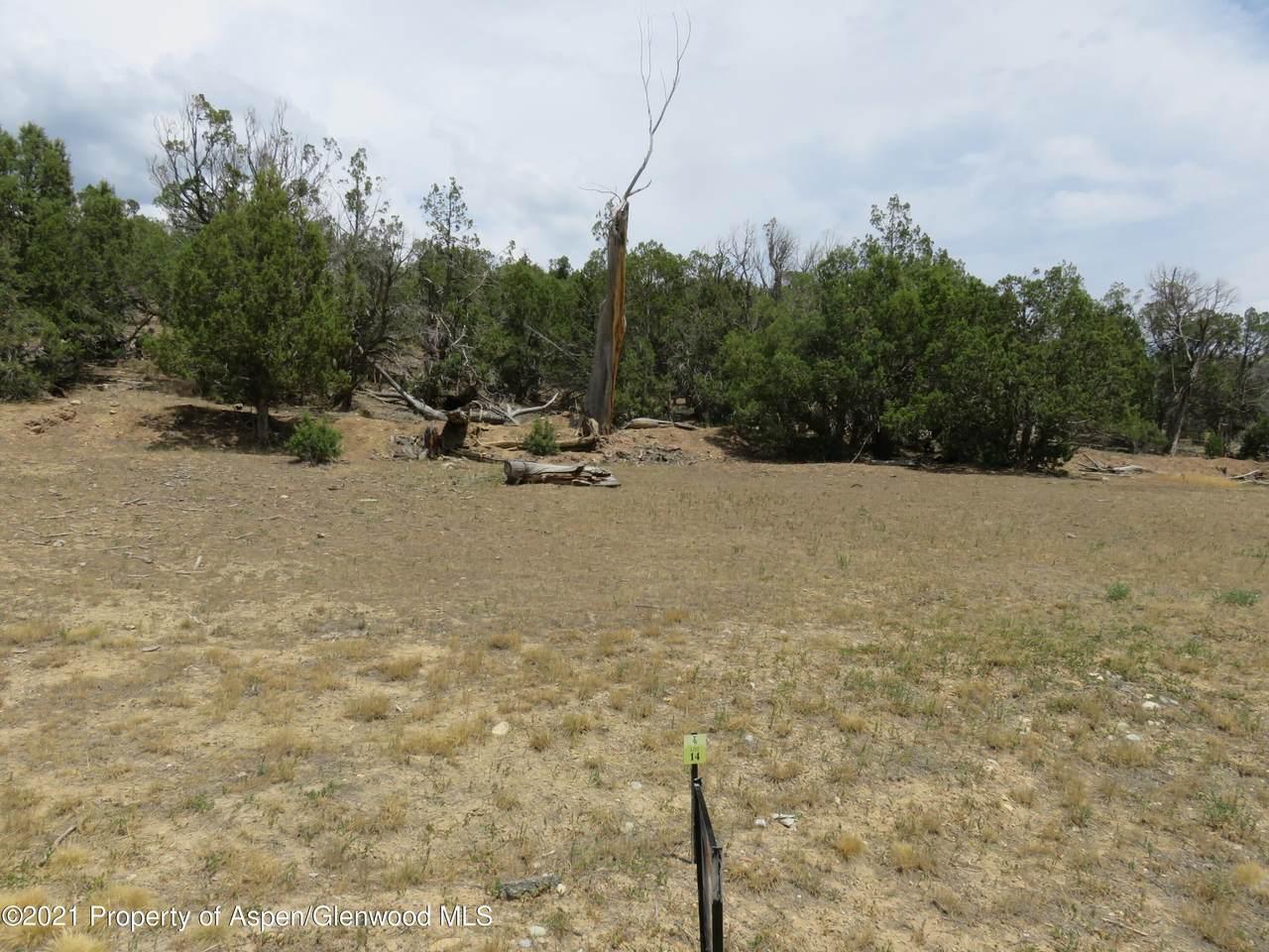 342 Faas Ranch Road - Photo 1