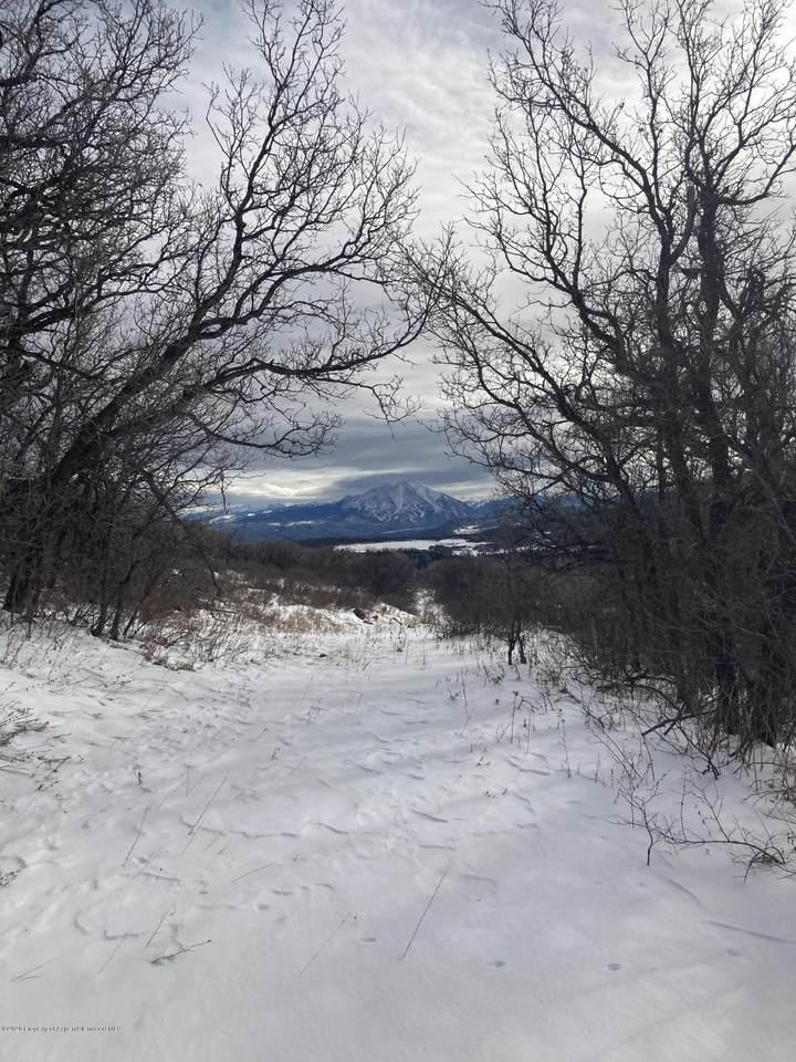 TBD Mountain Springs Road - Photo 1