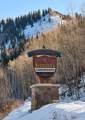 11101 County Road 117 - Photo 11