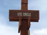 837 Ute Circle - Photo 6
