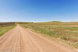 8383 County Road 29 - Photo 47