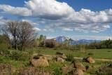 212 Hidden Springs - Photo 28