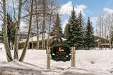 294 Snowmass Club Circle - Photo 19