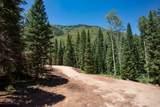 TBD Winding Way Road - Photo 5