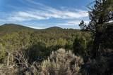 1151 Callicotte Ranch - Photo 7