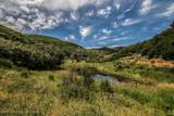 22521 Divide Creek Road - Photo 44