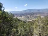 1705 Elk Springs Drive - Photo 12