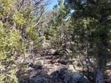 1705 Elk Springs Drive - Photo 13