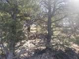 1705 Elk Springs Drive - Photo 14