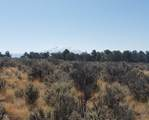 1705 Elk Springs Drive - Photo 15