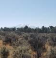 1705 Elk Springs Drive - Photo 16